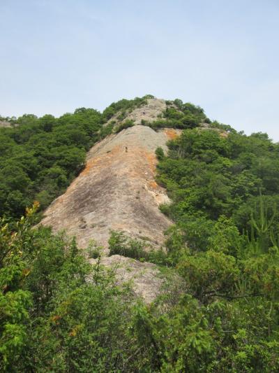 日本一低いと言われる「小野アルプス」、低くても歩きごたえ十分!1日で12座登ったよ。