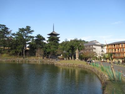 シニアのUAマイルで行く京都・橿原・奈良GOTO7日間 6)奈良高畑さんぽ
