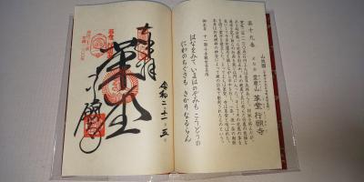 2020年11月 京都日帰り旅行 「皇室の名宝」展と猫と西国三十三巡礼 第19番行願寺