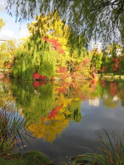 札幌の黄葉・中島公園 ~ 2020