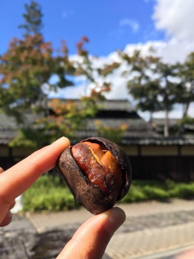 2020秋 週末GOTO長野格安旅~シティホテルに泊まって秋の味覚を楽しもう~