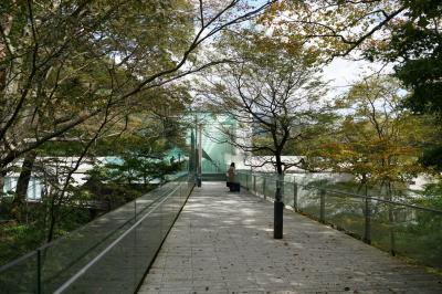 【神奈川】秋の箱根(ポーラ美術館、THE HIRAMATSU HOTELS & RESORTS 仙石原)