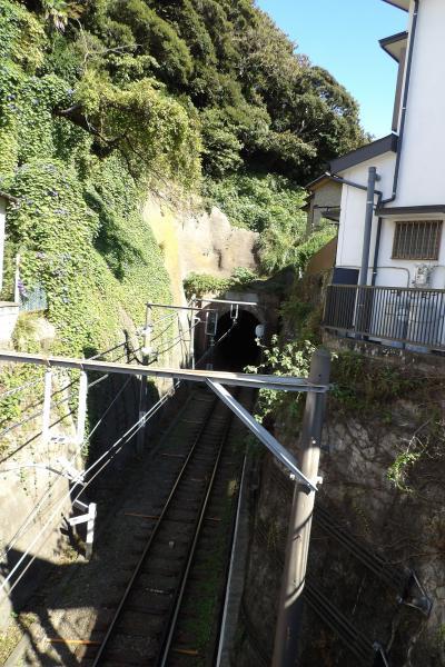 桜橋と極楽洞-2020年秋