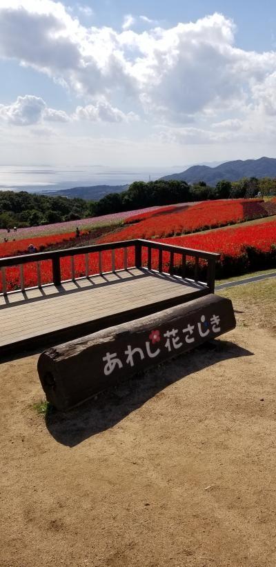 ふらっと阪急さんのバスツアーで淡路島からの大塚美術館です 前編
