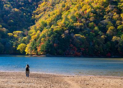秋深まる奥日光散策