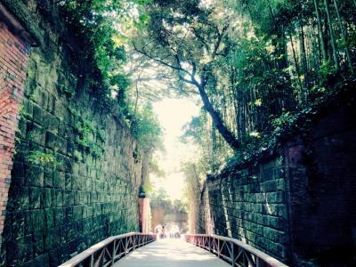 神奈川の無人島『猿島』~でも猿はいないよ
