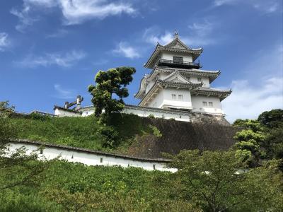 静岡のお城 掛川城と興国寺城編