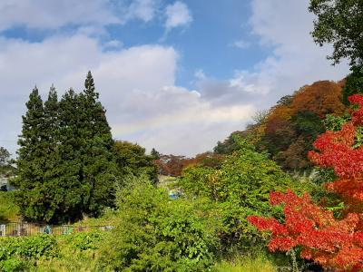 虹と巡り合った青森の紅葉(奥入瀬・蔦沼・八甲田・城ヶ倉大橋)