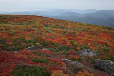 神の絨毯栗駒山紅葉狩り