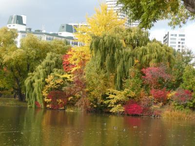 札幌 藻岩山・中島公園の紅葉