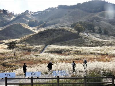 約11haに250万本のコスモスが広がる加古川・志方町から、約90haに及ぶススキの草原、砥峰高原を行きます!