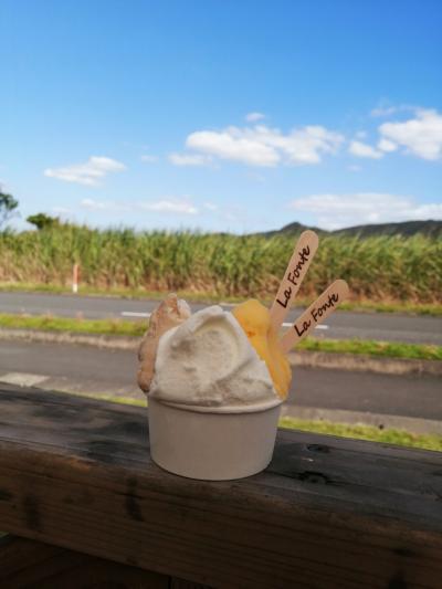 レンタカーで巡る奄美大島 10月下旬のビーチ&マングローブカヌー 3days☆前編☆