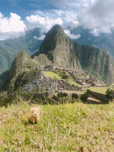 高山病には負けんぞと意気込んで南米へ、いつか見たかったあの景色 その③マチュピチュ遺跡へ