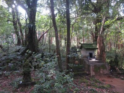 屋久島 島内観光