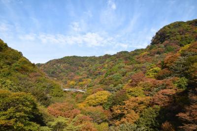 ひとり紅葉狩り部 妙義山~めがね橋~軽井沢 あまり紅葉してなかったけど