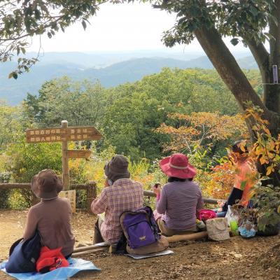 山を越えてお昼ご飯を食べにゆく(父と娘たちの山歩き)☆埼玉県:飯能市