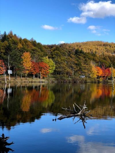 紅葉を見に 一日目 奈良井宿 霧ヶ峰 女神湖 エクシブ蓼科