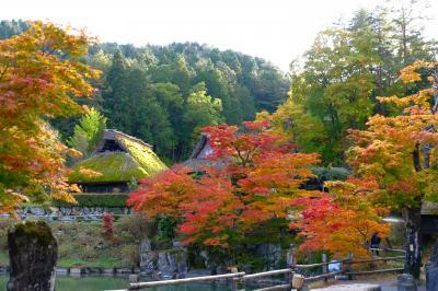 日帰りで日本酒に高山グルメ三昧、そして紅葉の飛騨の里へ。