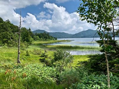 コロナと猛暑の日々:ちょっと息抜きに北関東&尾瀬沼へ:4 <尾瀬沼へ~>