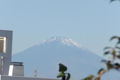 小山台中裏山から見る富士山-2020年秋
