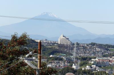 幸ヶ丘団地から見る富士山-2020年