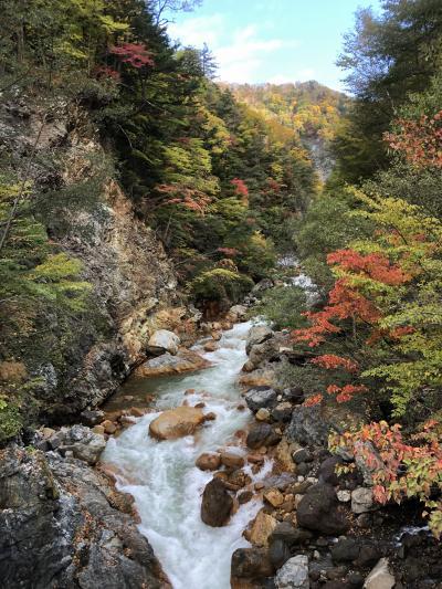 北アルプス梓川急流の紅葉