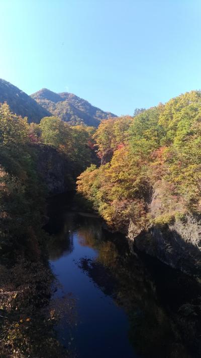 GoToキャンペーンで秋の定山渓温泉へGo
