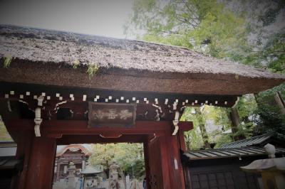 秋の東京ゆらゆら散歩~深大寺と吉祥寺