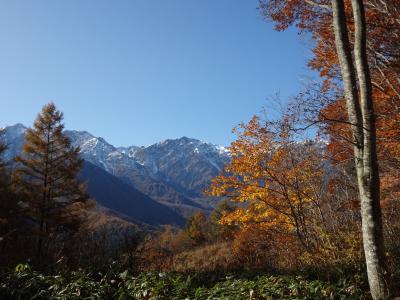 三段紅葉の白馬岩岳マウンテンリゾート
