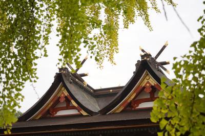 20201028-5 岡山 吉備津神社の本殿は、珍しい吉備津造。国宝らしい。