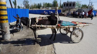 新疆シルクロードの旅ー2