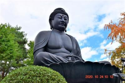 【東京散策110】完成当時、日本3位の東京大仏 赤塚から西高島平までを歩いてみた