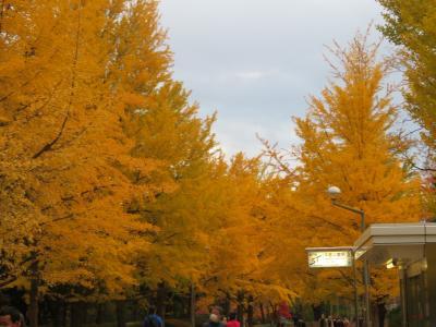 札幌の黄葉・中島公園2 ~ 2020