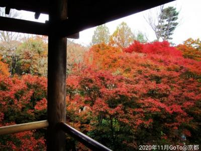 ☆京都/嵐山温泉【渡月亭】紅葉が美しい秋の京都へGoTo~週末温泉1泊2日(2020.11)