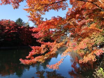 軽井沢の紅葉狩り