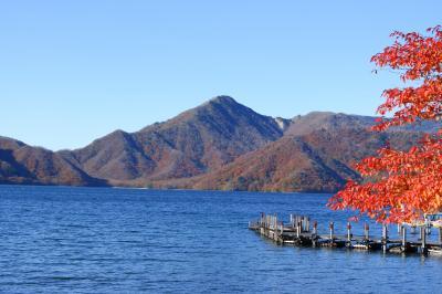 秋爛漫!日光満喫の旅