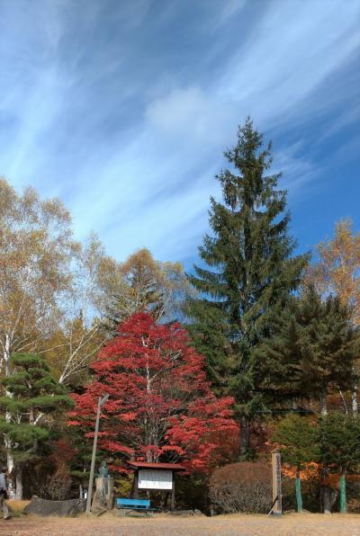 紅葉狩りに蓼科へGo  2/4 紅葉の名所:横谷観音と王滝