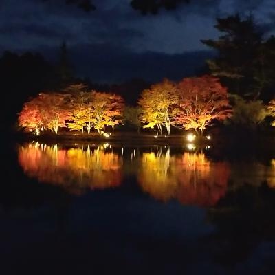 紅葉狩りに蓼科へGo 3/4 紅葉の名所:蓼科湖