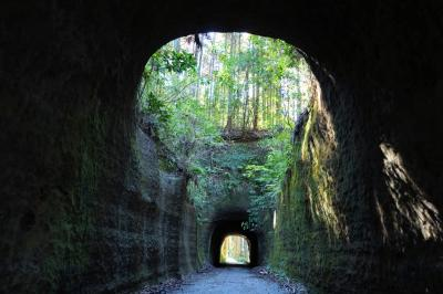 房総を鉄道で巡る その1~里山を歩き、港町勝浦へ