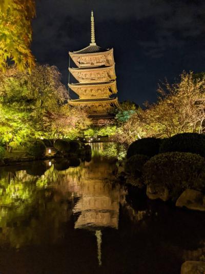 秋の京都feat.うちの両親