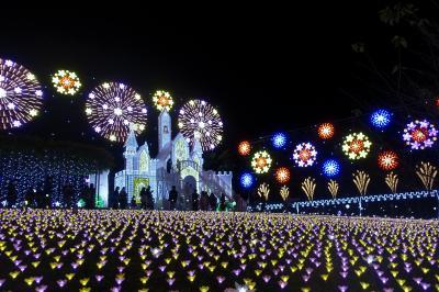 2020年『光と花のコラボレーション』・・足利フラワーパーク