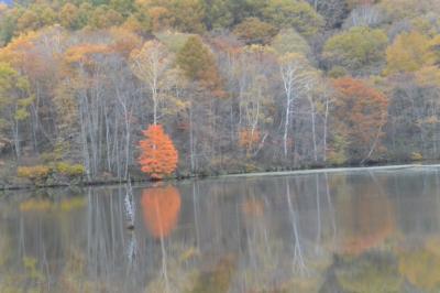 白地図を塗る旅:(退職記念旅行 3日目 4日目)滋賀比叡山から長野、戸隠神社&善光寺