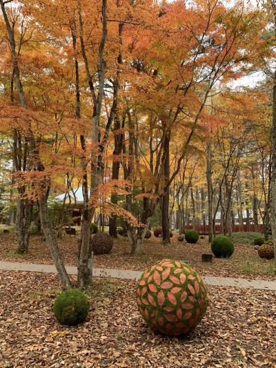 紅葉の軽井沢に行ってきました!塩沢湖(軽井沢タリアセン)、軽井沢高原教会、石の教会の紅葉を堪能してきました!