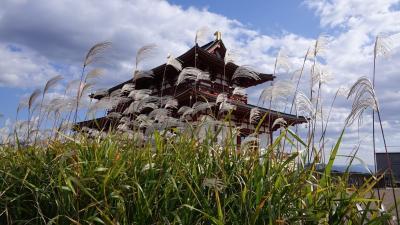 平城宮跡はススキでした