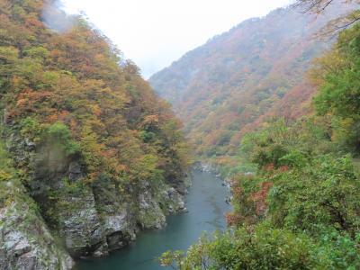 赤柴渓谷と玉川峡(雨天)人数もまばらです。