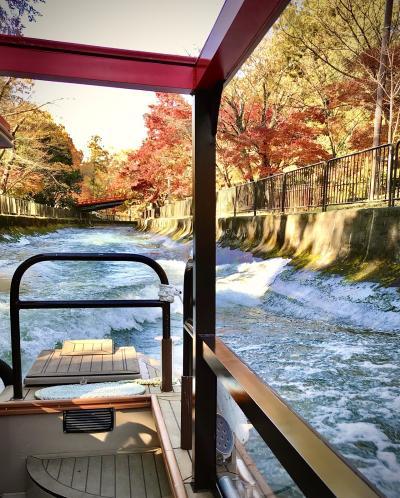 琵琶湖疎水船で紅葉狩り