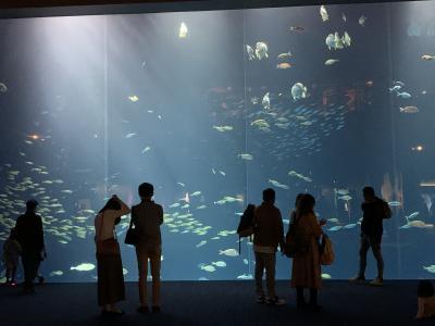 秋晴れの一日、四国水族館へ