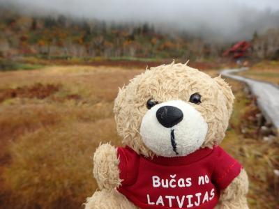 Day3-1 Latvijas Lācisの大冒険♪ 日本のアルプスをハイキング(栂池でようやくのびのび歩いてみる)