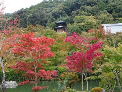 色づき始めた京都へ② 南禅寺~銀閣寺