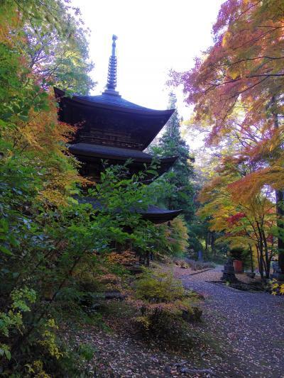 貞祥寺の紅葉